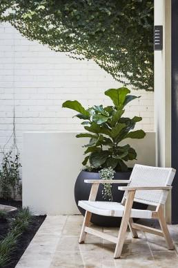 Paddington Landscape Designer